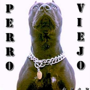 Deltantera: Arce - Perro viejo
