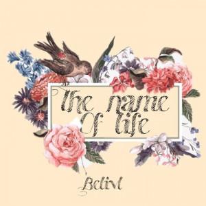 Deltantera: Belivl - The name of life (Instrumentales)