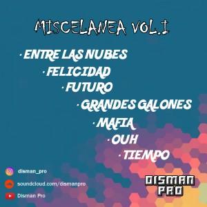 Trasera: Disman pro - Miscelanea Vol. 1 (Instrumentales)