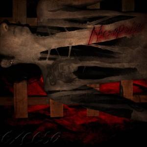 Deltantera: Exceso - Necropsia