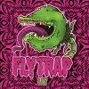 Flytrap - Flytrap