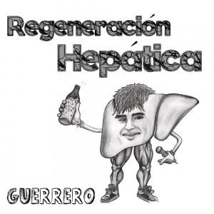 Deltantera: Guerrero - Regeneración hepática