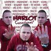Harlot - Conexiones