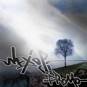 Deltantera: Nexos - La hora de sentir (Promo)