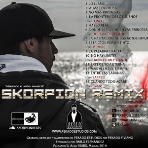 Trasera: Pekado y Skorpion - Pausando el alma (Remix)