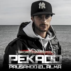 Deltantera: Pekado y Skorpion - Pausando el alma (Remix)