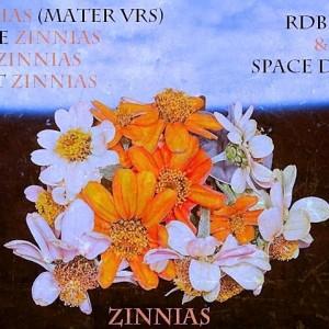 Trasera: Rdbrbs y Space dealers - Zinnias (Instrumentales)