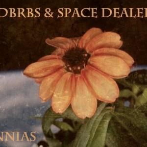 Deltantera: Rdbrbs y Space dealers - Zinnias (Instrumentales)