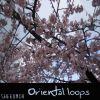 Shek - Oriental loops (Instrumentales)