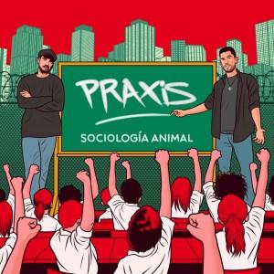 Deltantera: Sociología animal - Praxis