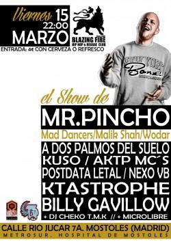 El show de Mr.Pincho en Móstoles