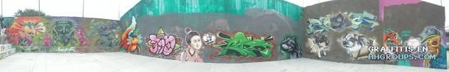 Varios artistas en Hidalgo